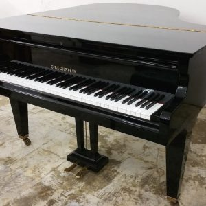 C.BECHSTEIN L Side